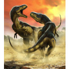 Albertosauruses Fight